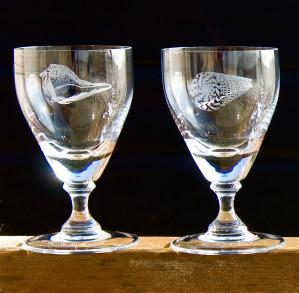 Asquith Seashells 1